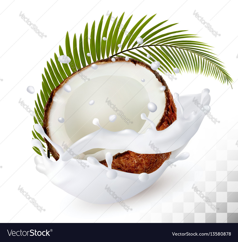 Coconut in a milk splash on a transparent