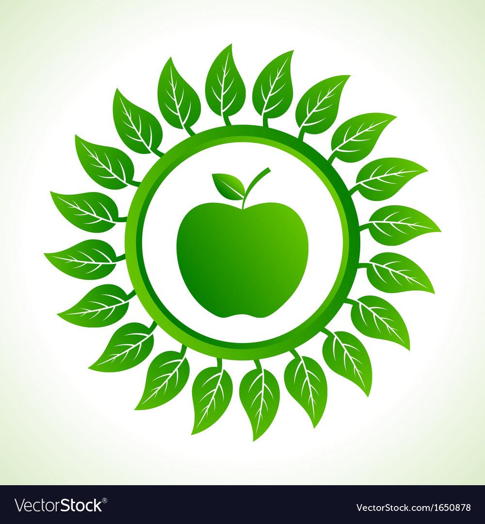 Green apple organic food with leaf