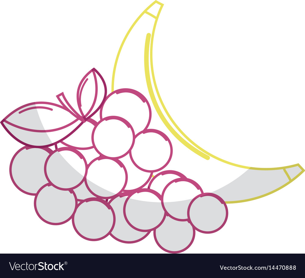 Silhouette delicious banana and grape fruit