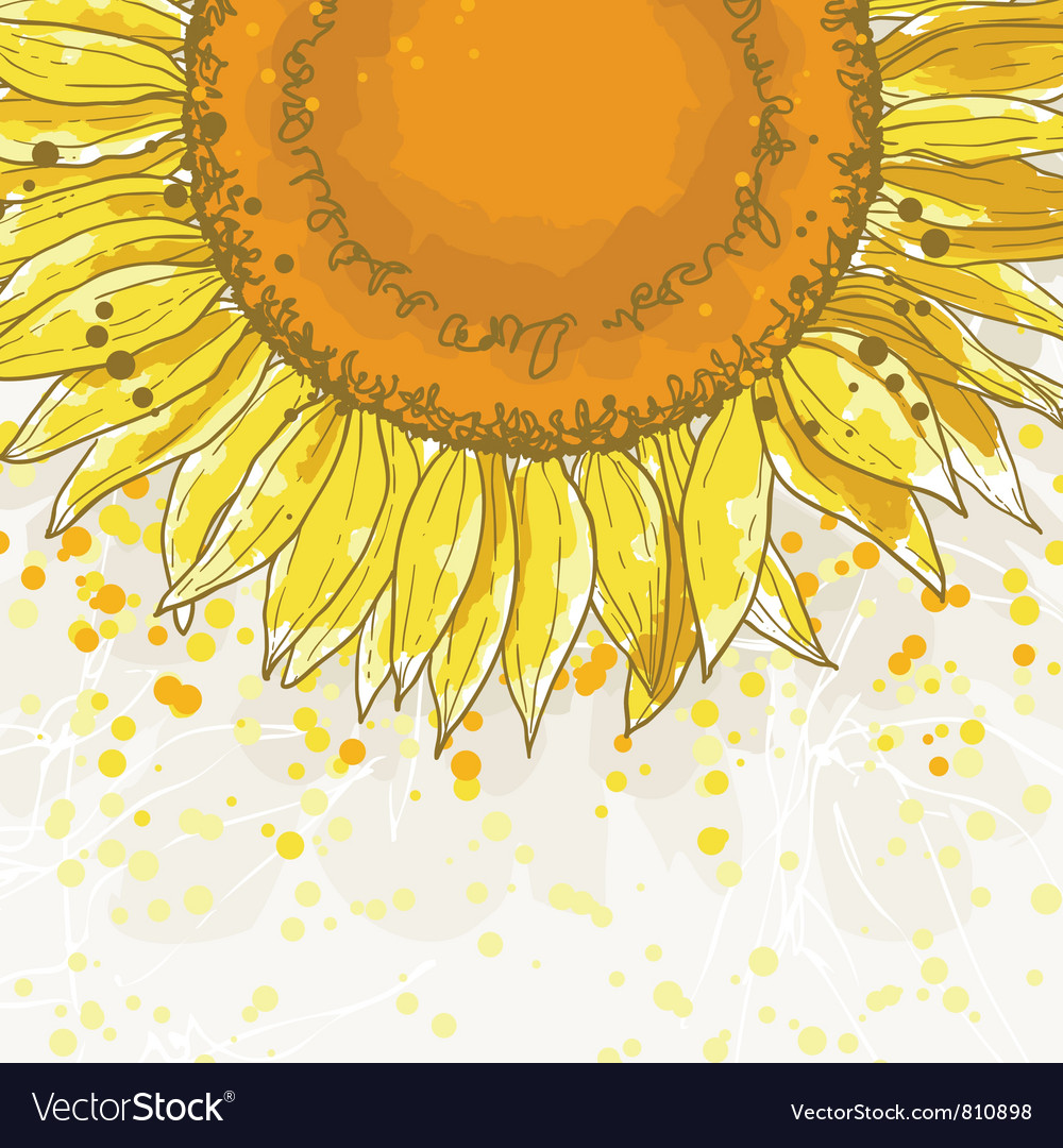 The square frame with sunflowers Royalty Free Vector Image