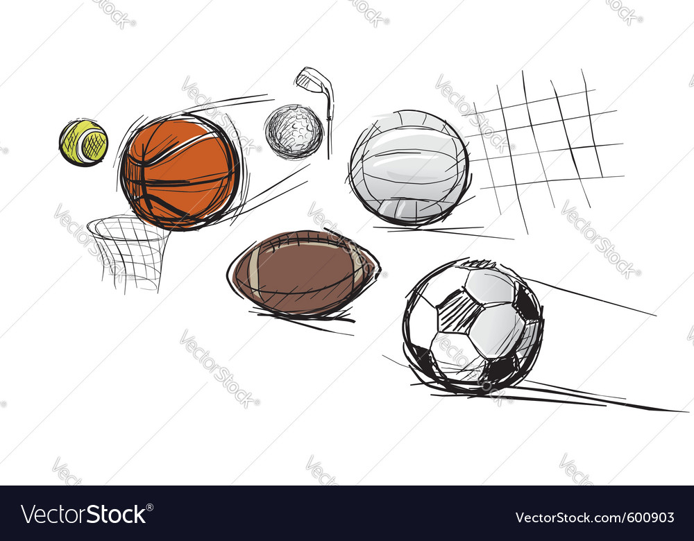 Sport ball sketches