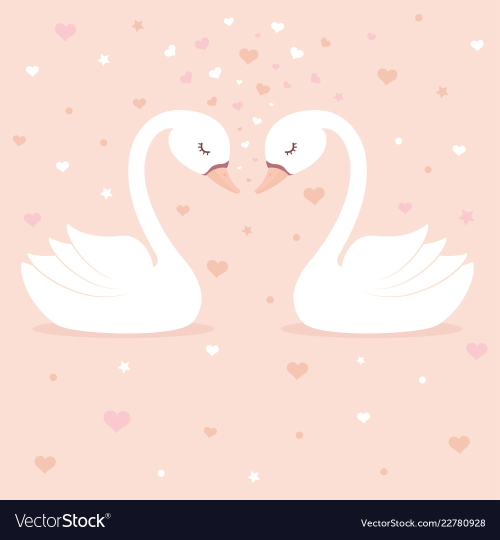 Cute swans on pink background