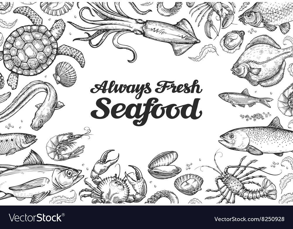 Menu restaurant seafood hand drawn collection of