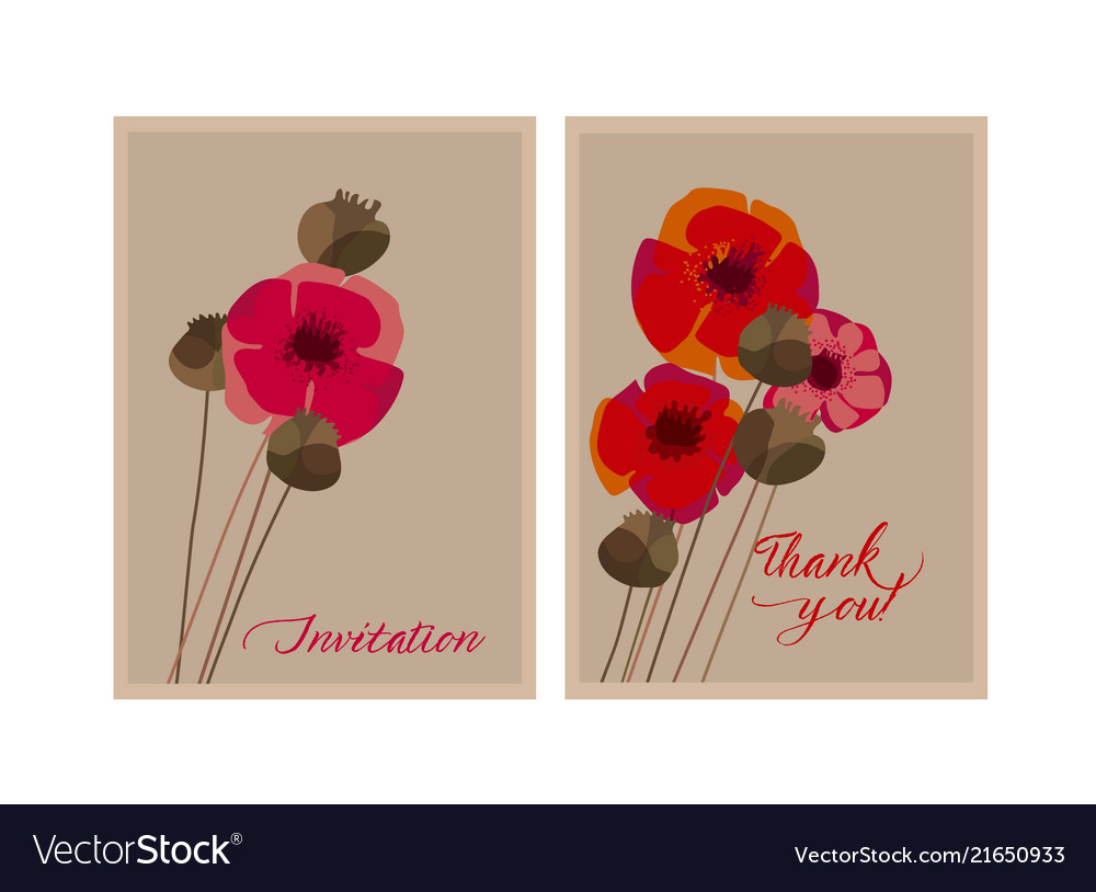 Poppy flower and seed box design element vector image mightylinksfo