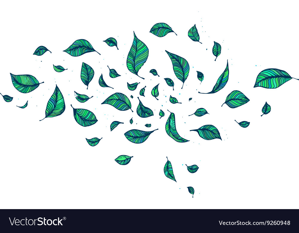 Green leaf in wind