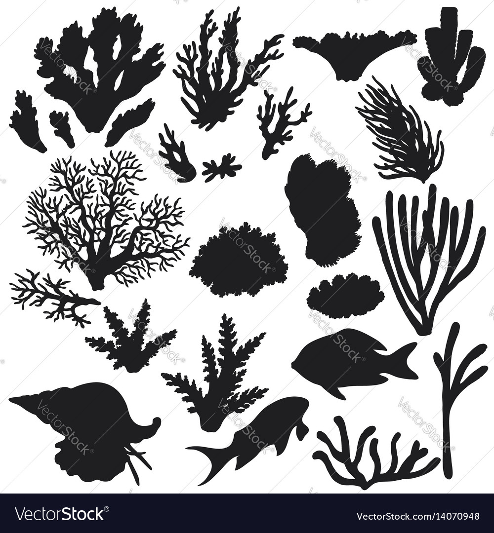 Reef animals and corals silhouette set