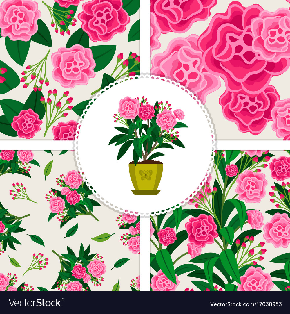 Pink Flower Icon And Patterns Set Royalty Free Vector Image