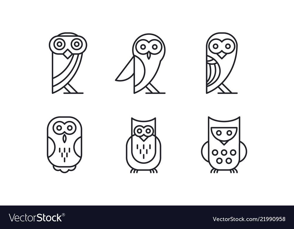 Set of 6 different owl forest bird simple