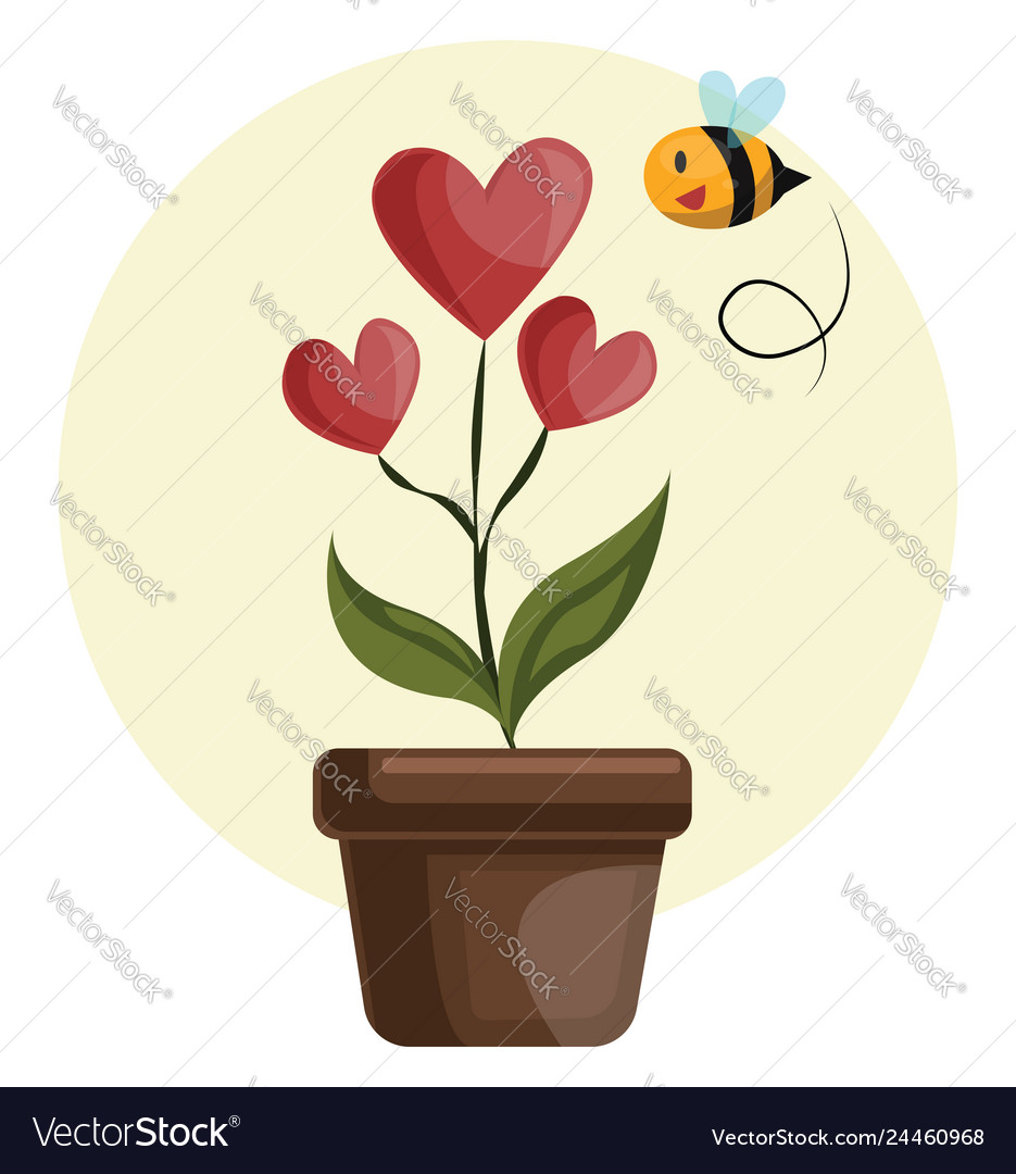 House plant with hearts in stead of flowers grren