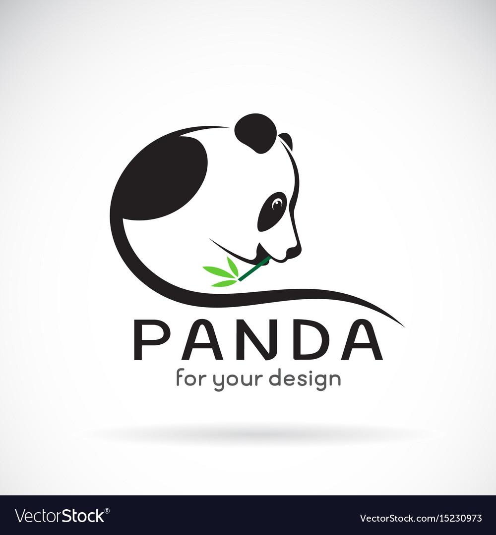 Panda design on a white background wild animals vector image