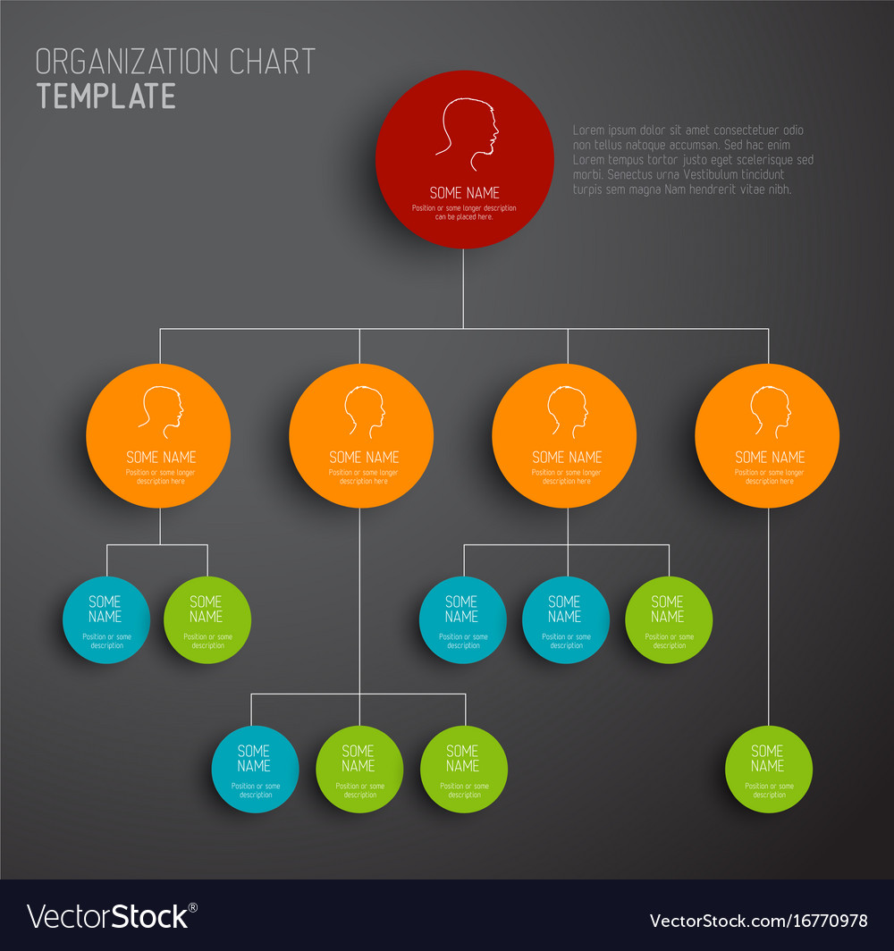 Organization Chart Template | Modern And Simple Organization Chart Template Vector Image
