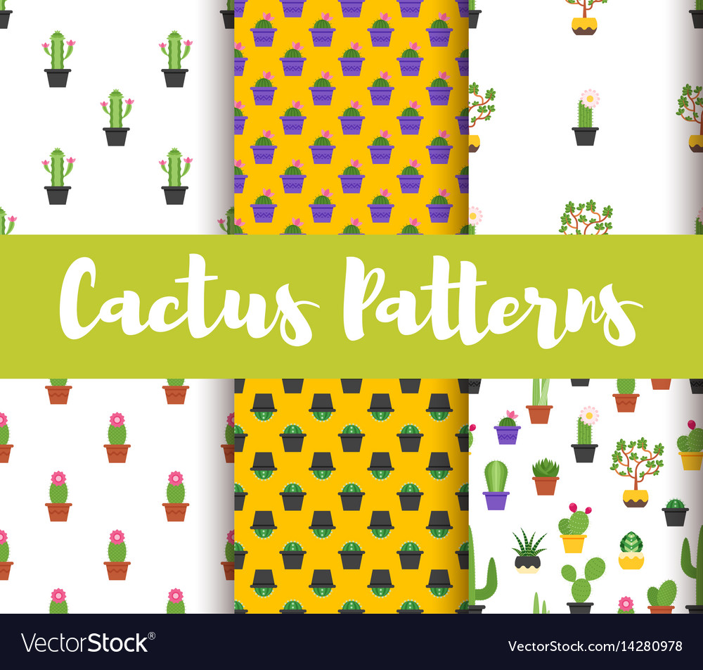 Set of patterns with colorful cactus vector image
