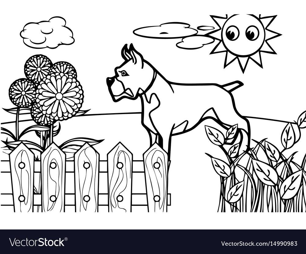 Dog cartoon coloring book
