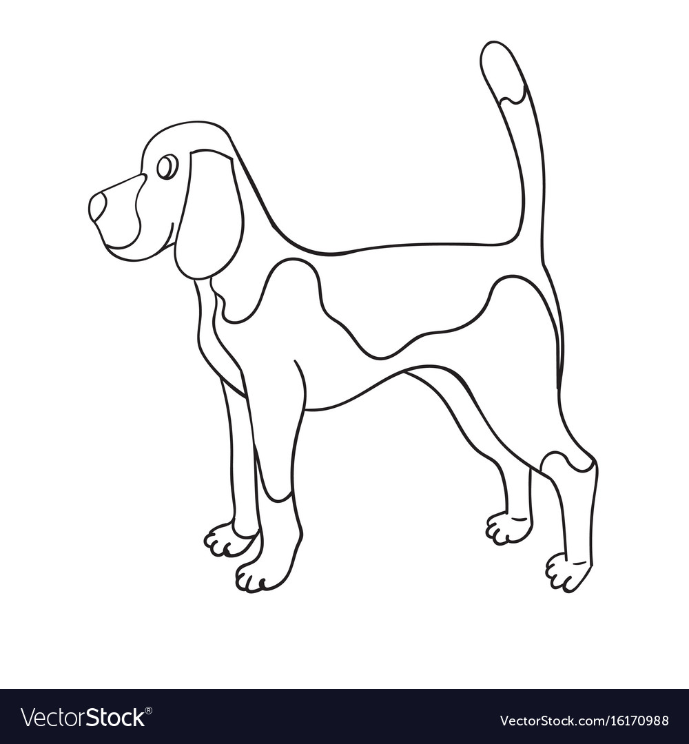 Cute cartoon contour beagle isolated on white vector image