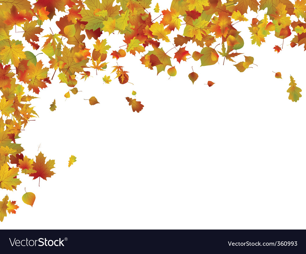 background of autumn leaves royalty free vector image