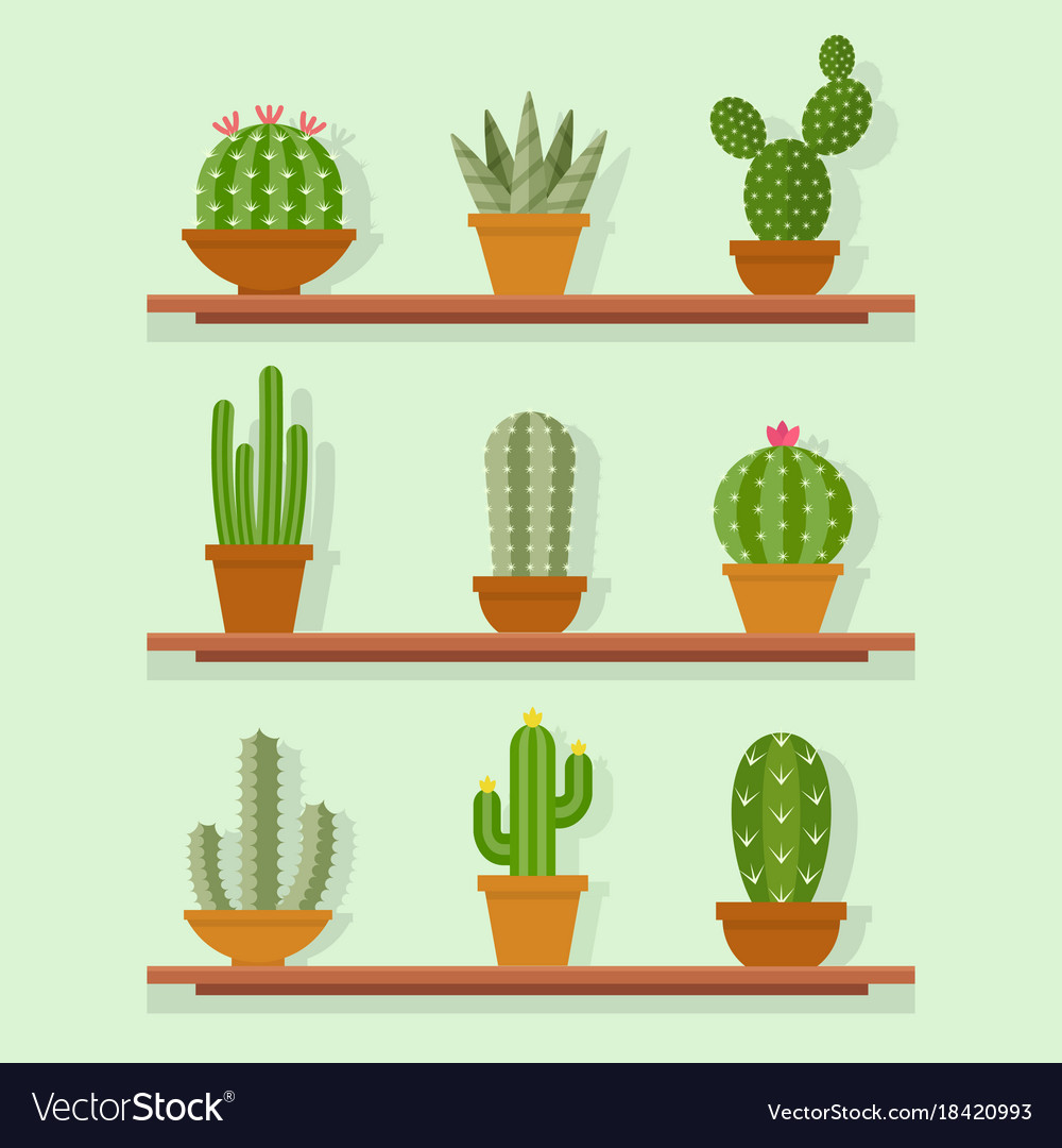 Cactus icon in a flat style