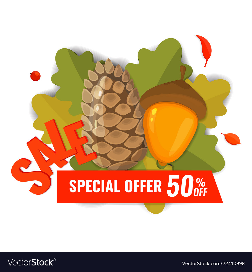 Autumn sale banner with pine cone acorn and