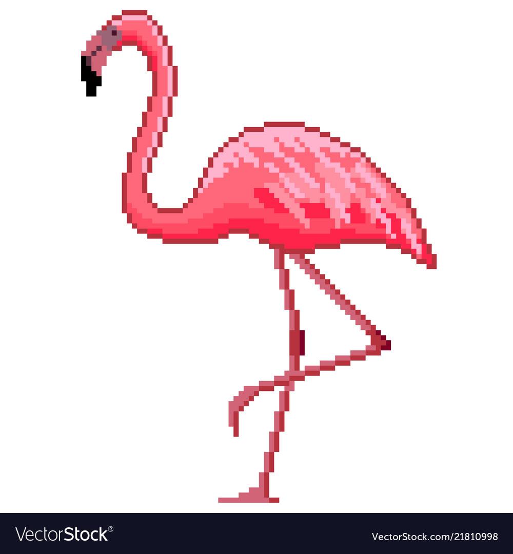 Pixel art pink flamingo detailed isolated