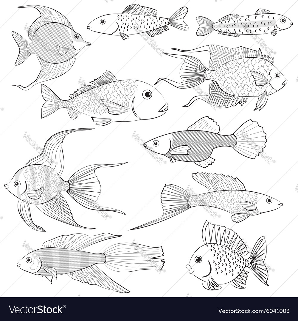 Set of contour black silhouettes of fish