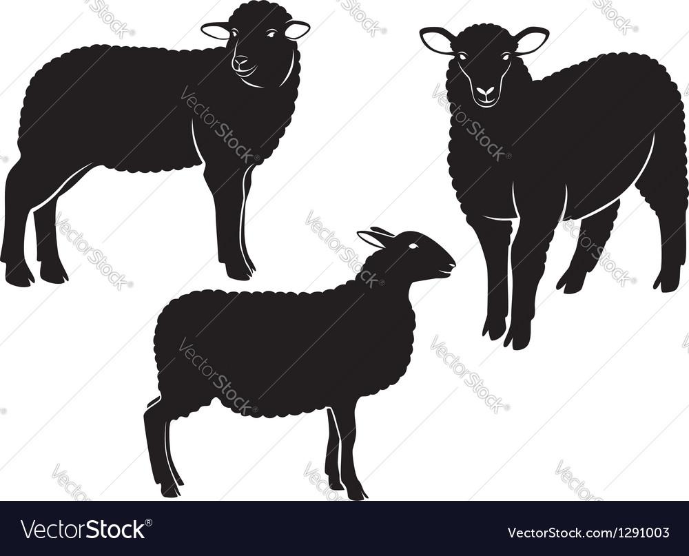 sheep royalty free vector image vectorstock rh vectorstock com sheep free vector sheep vector silhouette