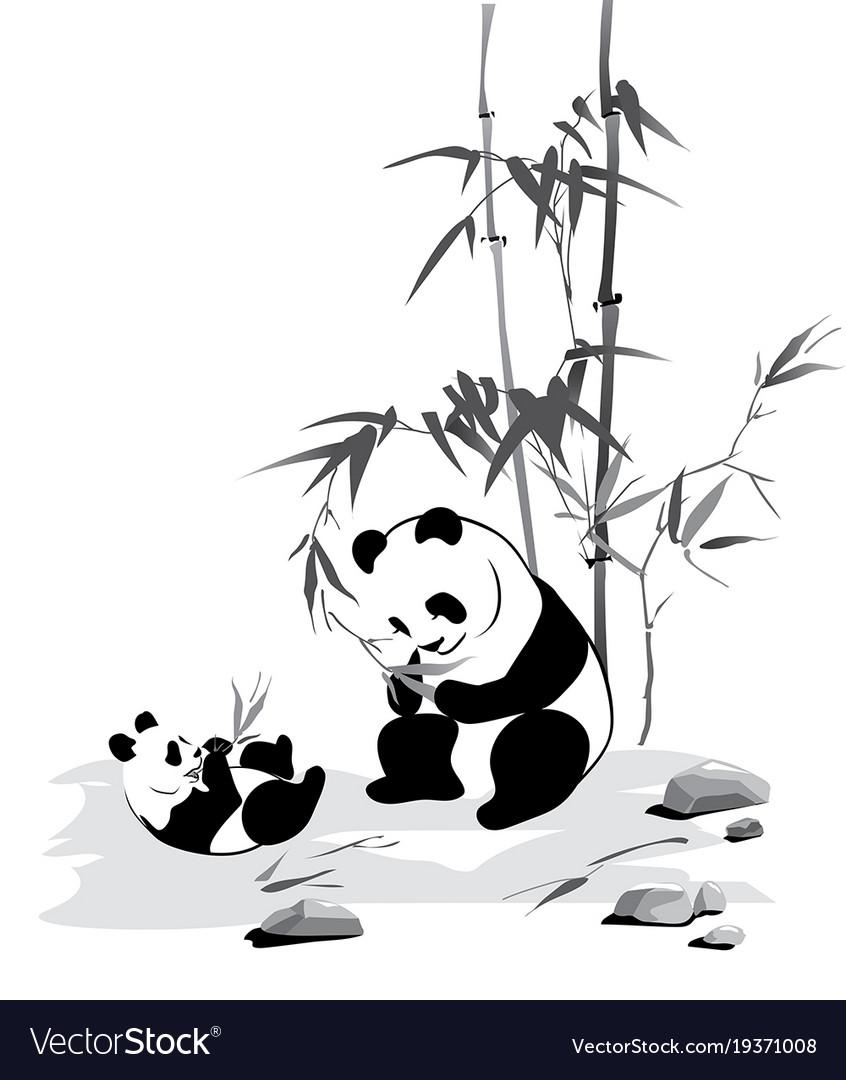 Panda And Baby Eat A Bamboo Royalty Free Vector Image