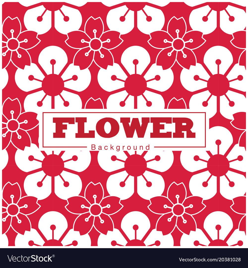 Flower sakura pattern white and red background vec