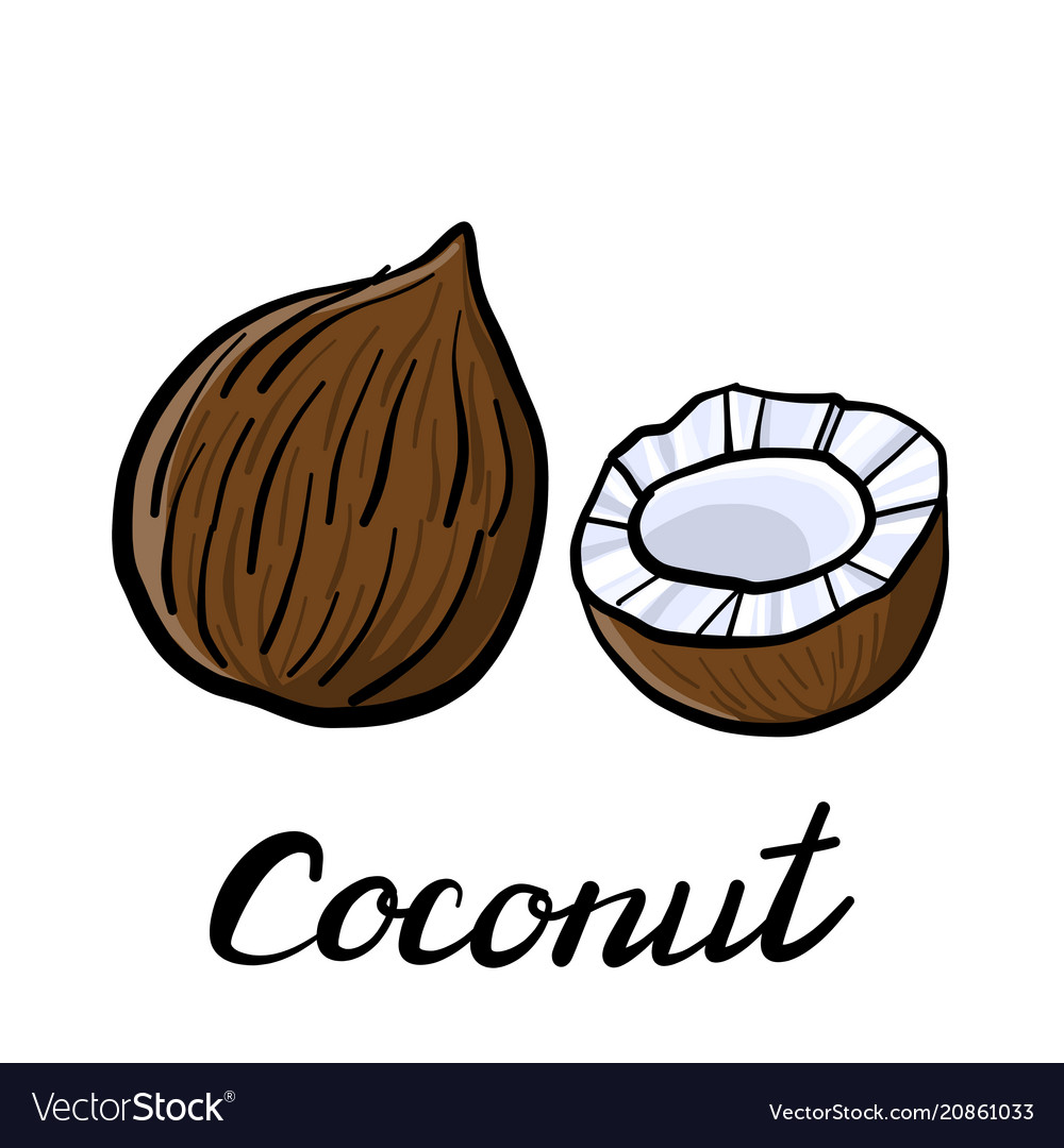 Drawing coconut