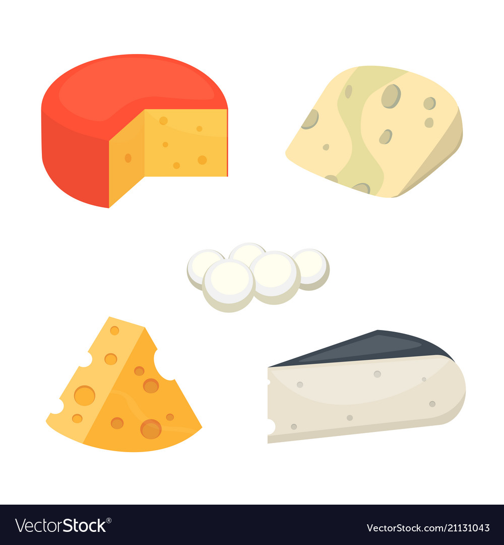 Cheese types cartoon style