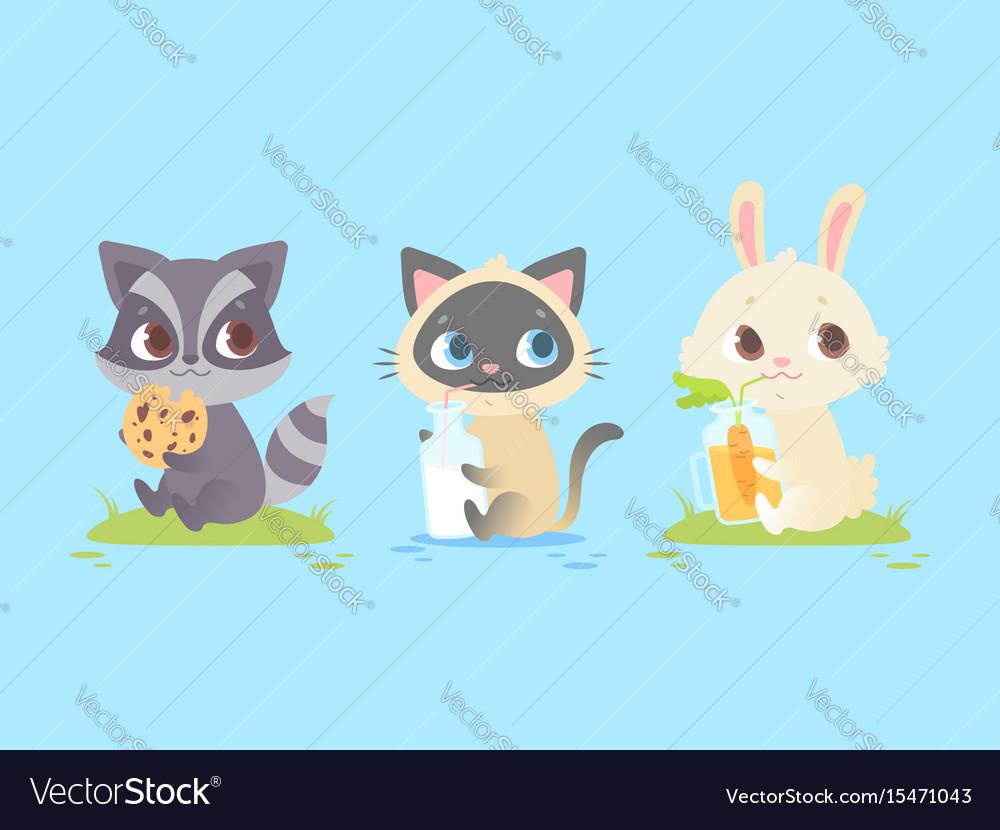 Cute baby animals baby raccoon kitten bunny