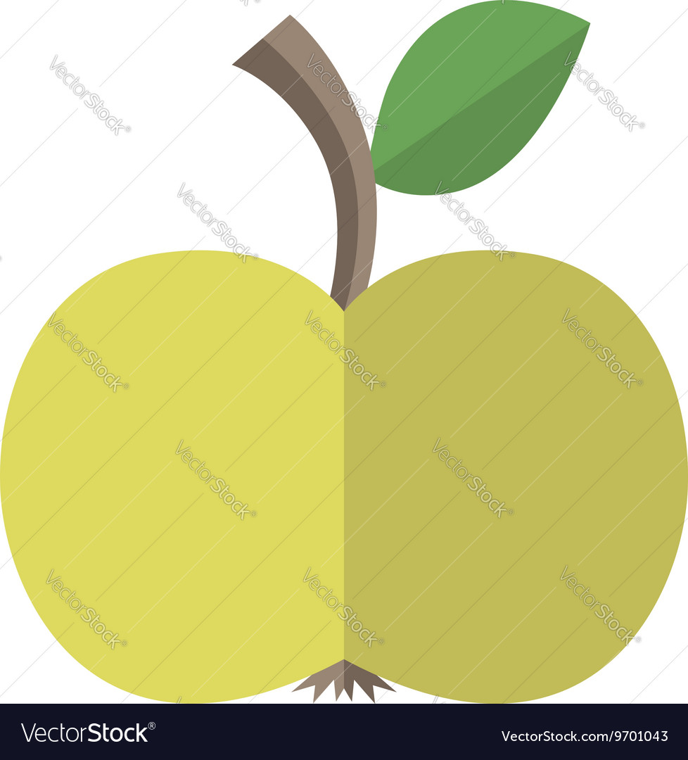 Flat style apple isolated vector image