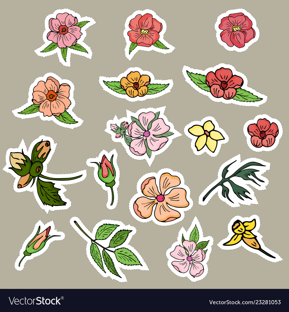 Stickers flowers buds and leaves of individual vector image