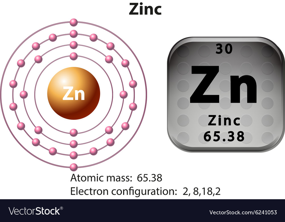 Symbol and electron diagram for zinc royalty free vector symbol and electron diagram for zinc vector image ccuart Images