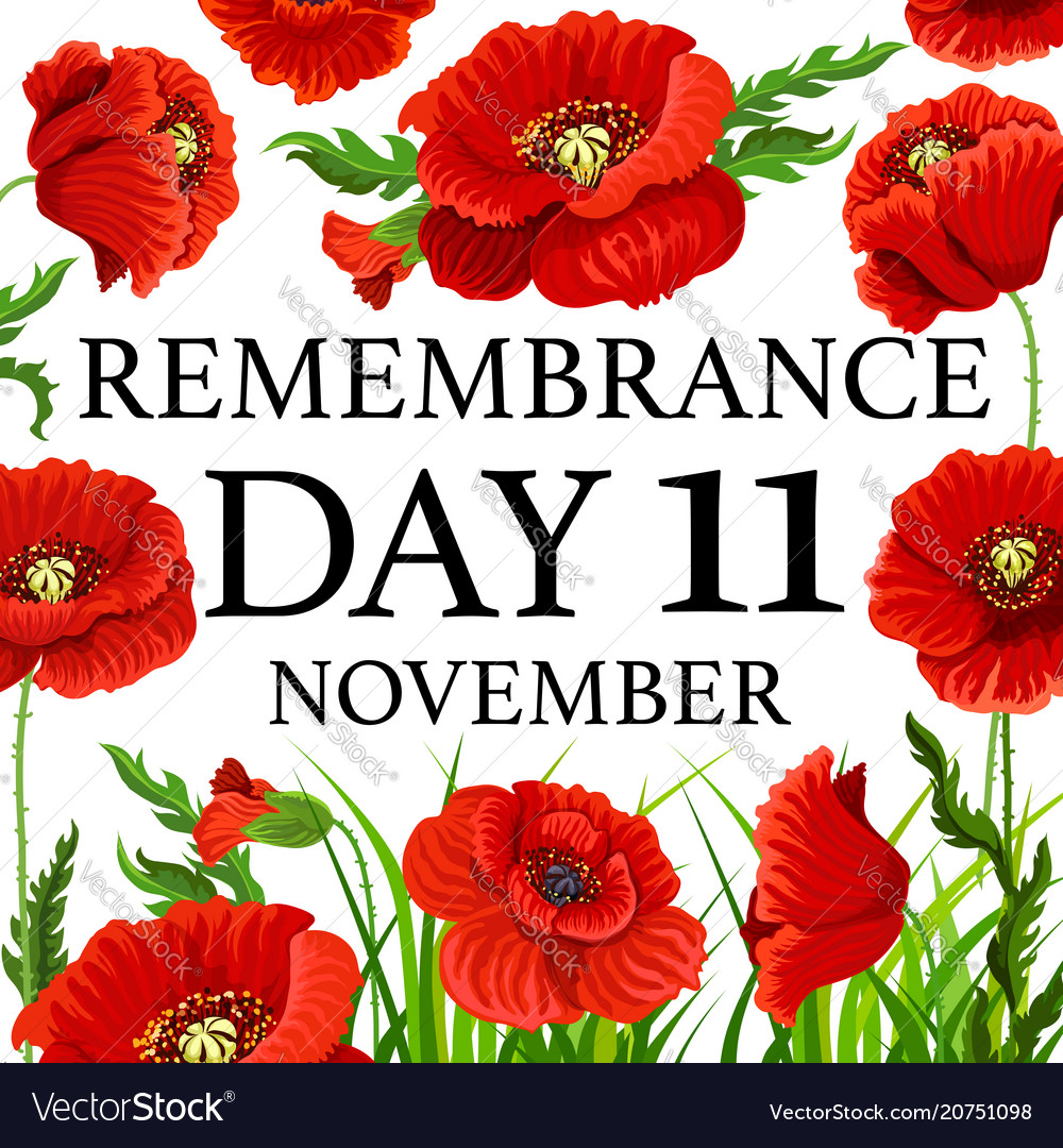 11 november poppy remembrance day card Royalty Free Vector