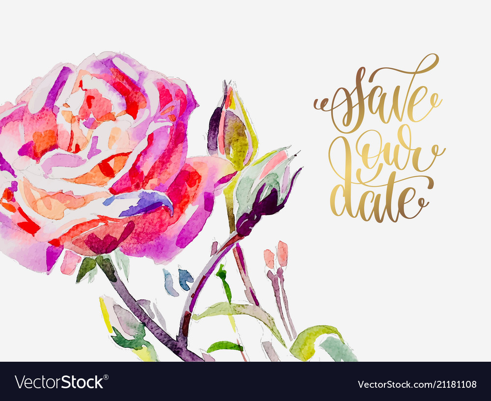 Hand painting watercolor rose greeting card to vector image m4hsunfo