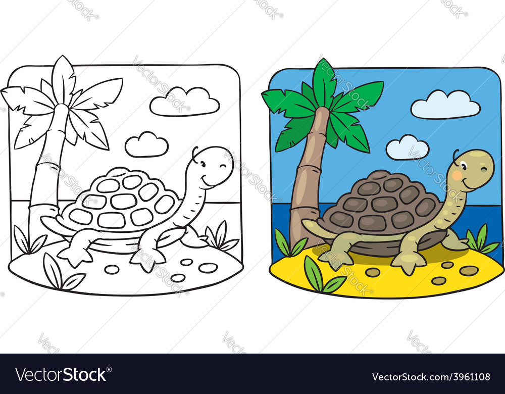 - Little Turtle Coloring Book Royalty Free Vector Image
