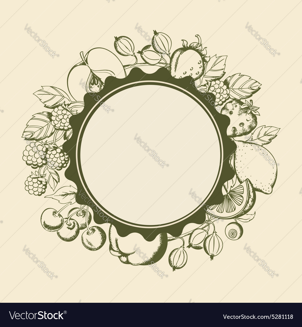 Banner with fruits and berries vector image