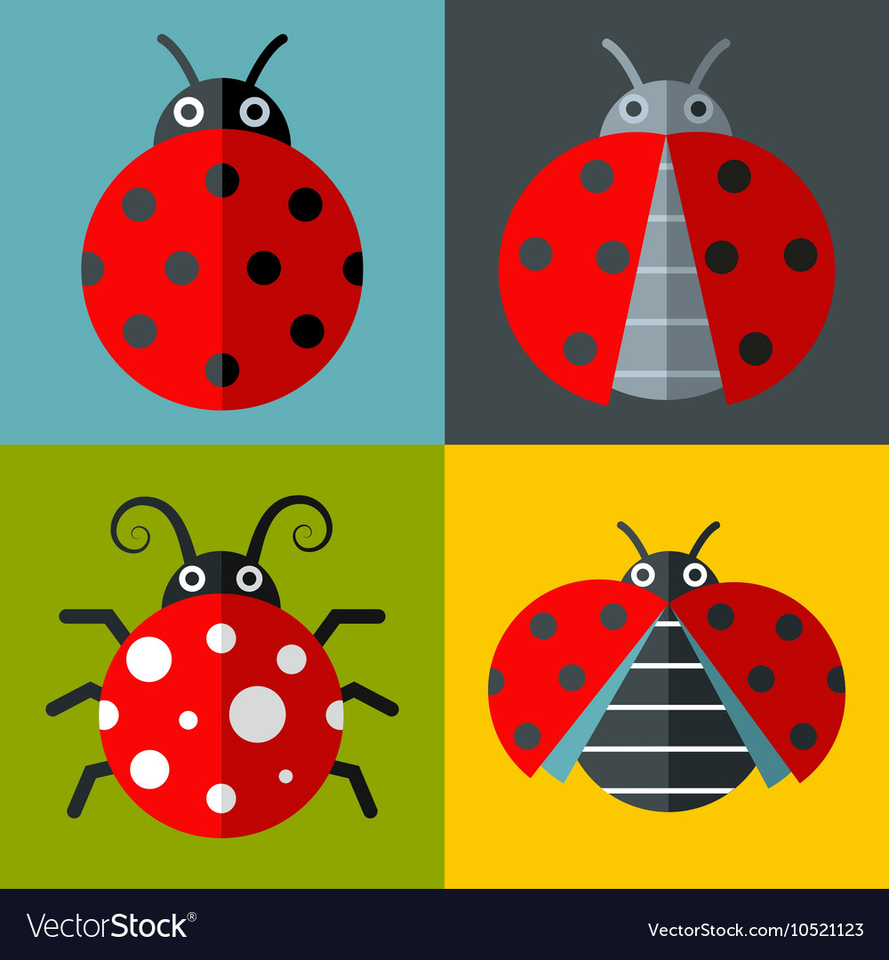 Ladybug icons in flat style on color background
