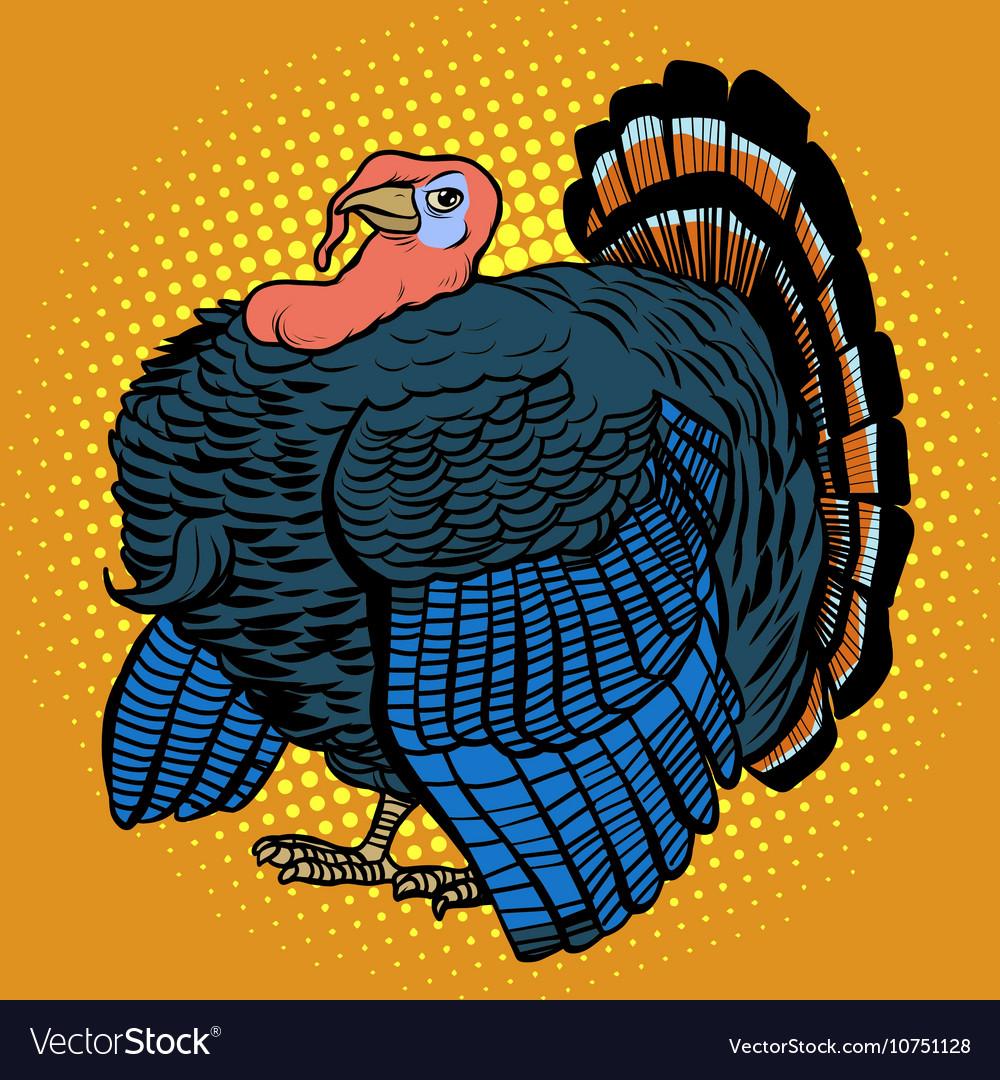 Poultry Turkey realistic