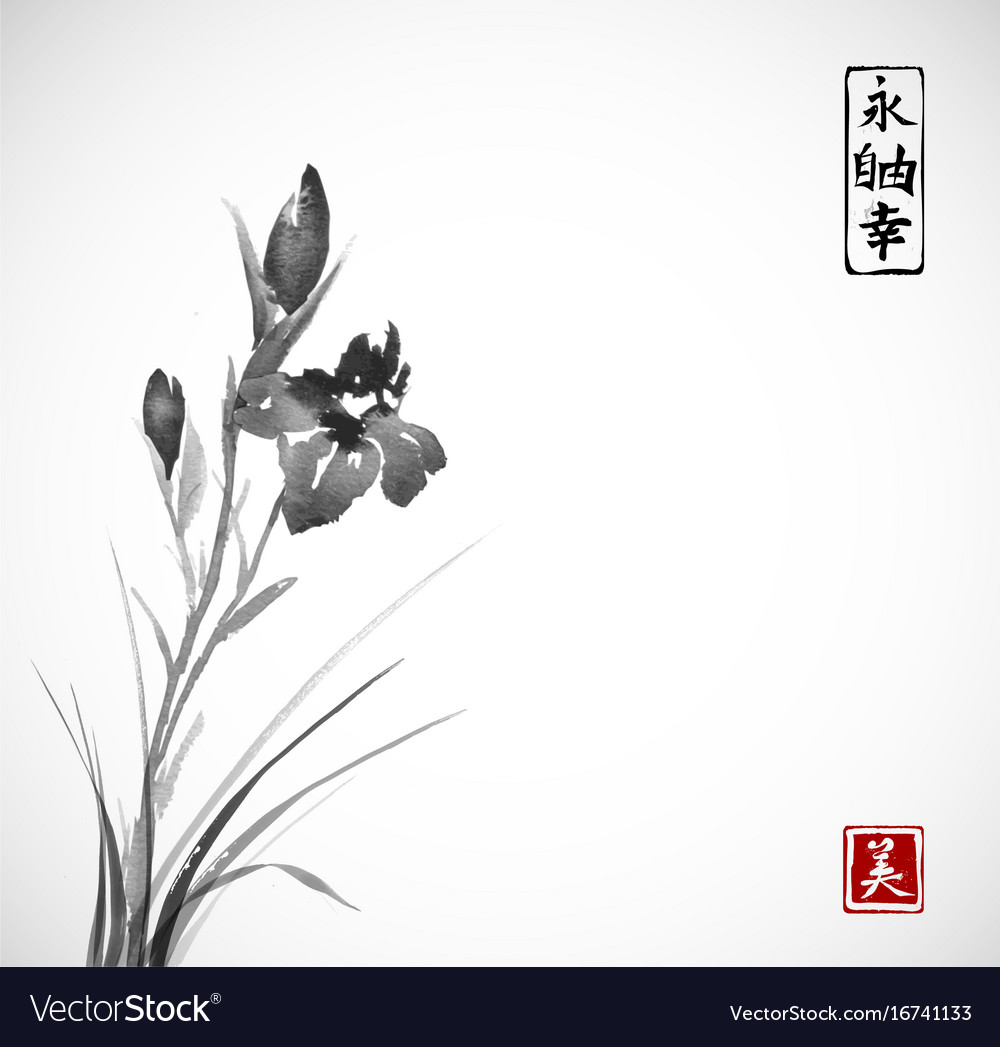 Black iris flowers hand drawn with ink in asian vector image izmirmasajfo