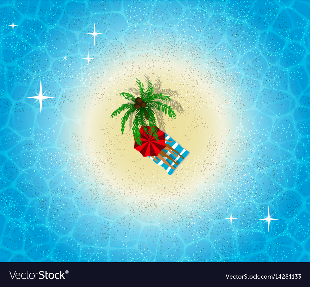 Paradise island aerial view palm tree on beach vector image