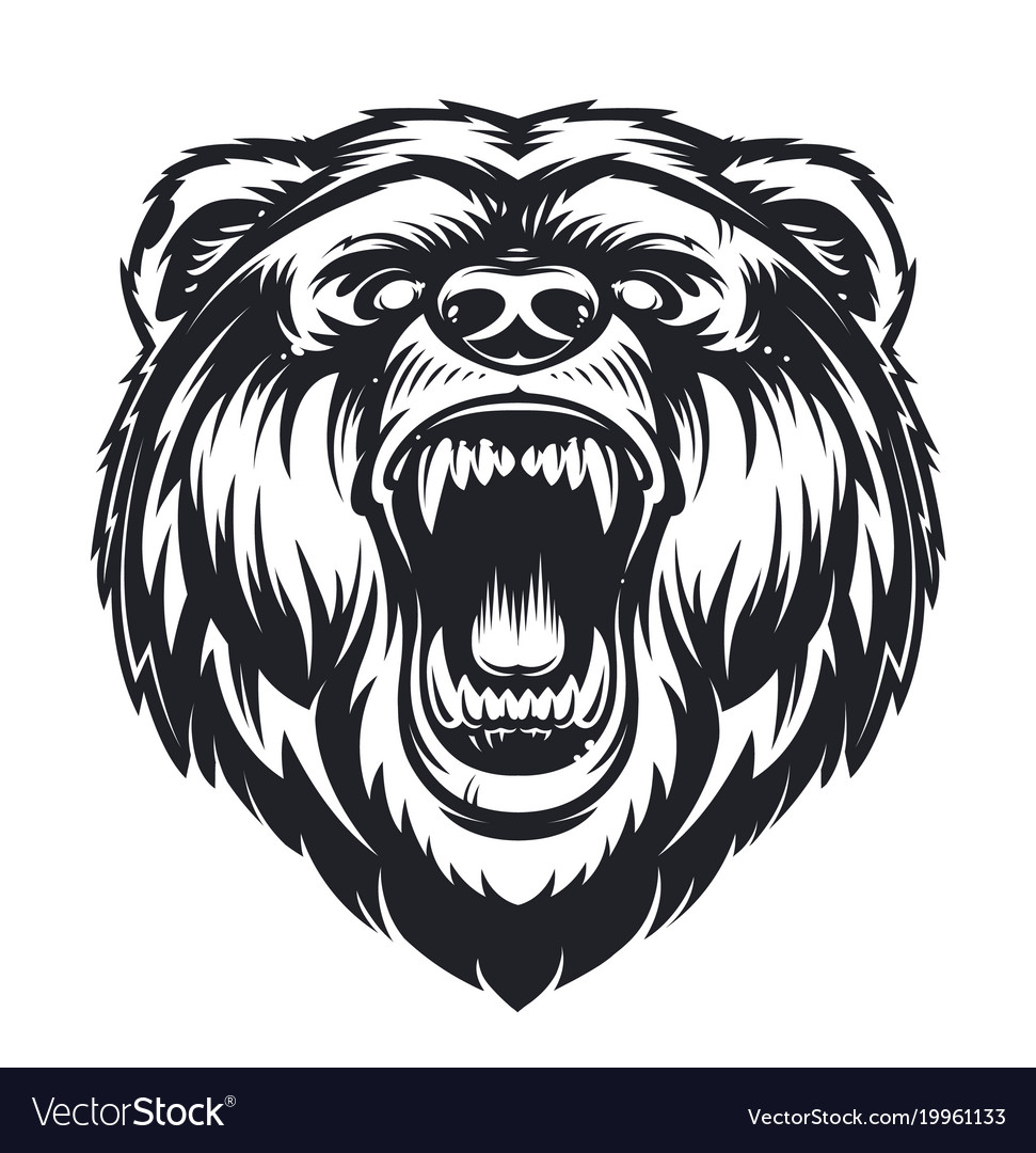 roaring bear royalty free vector image vectorstock rh vectorstock com bear factory uk bear factory