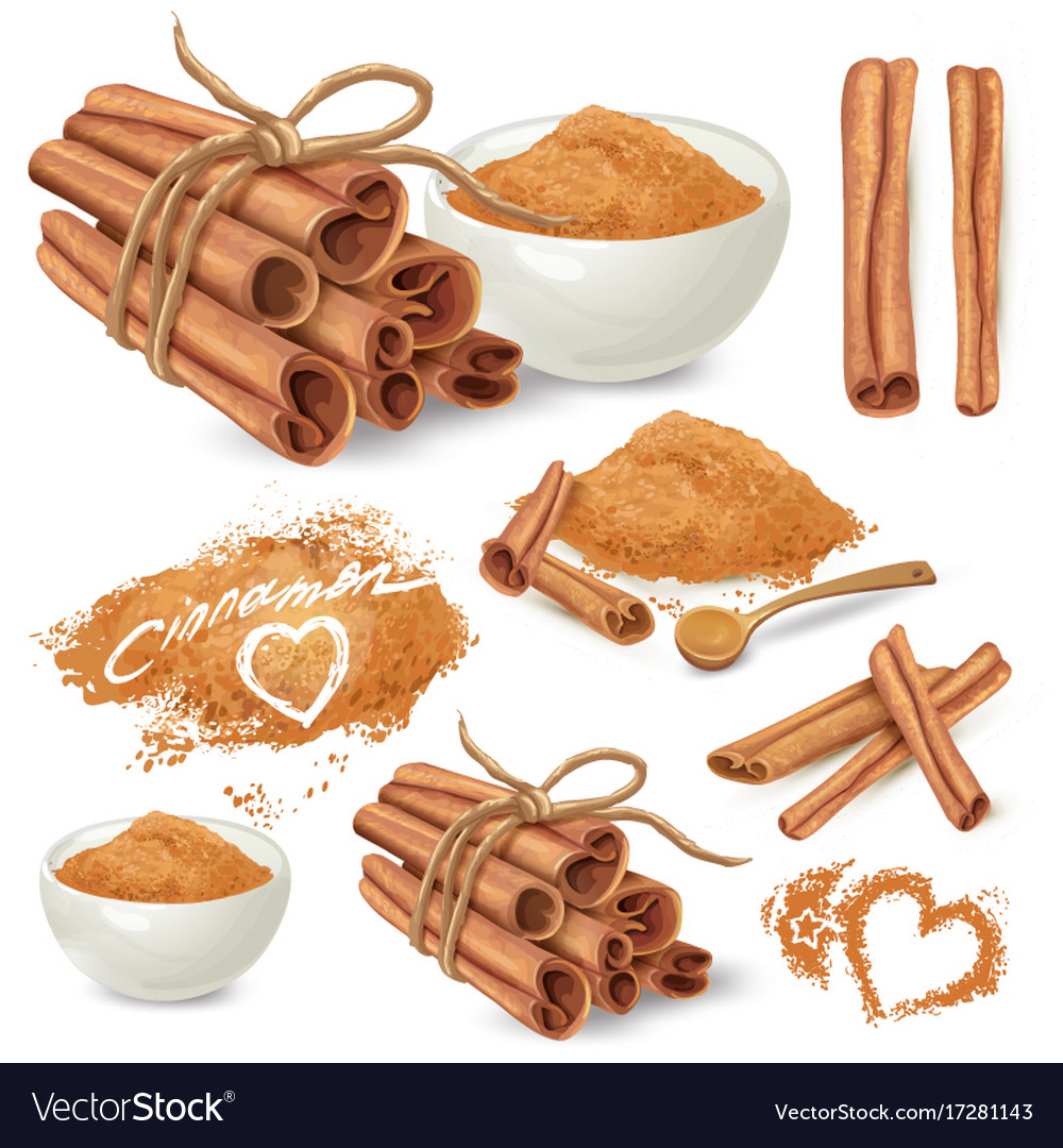 Cinnamon sticks and powder collection vector image