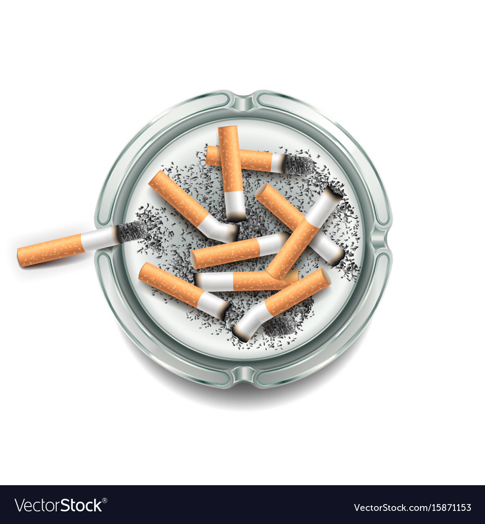 Ashtray with cigarettes isolated on white vector image