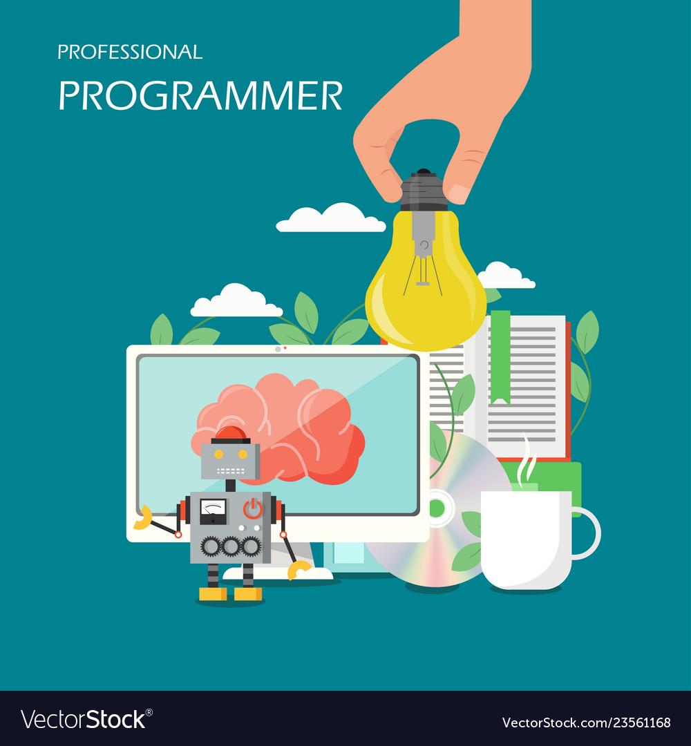 Professional programmer flat style design