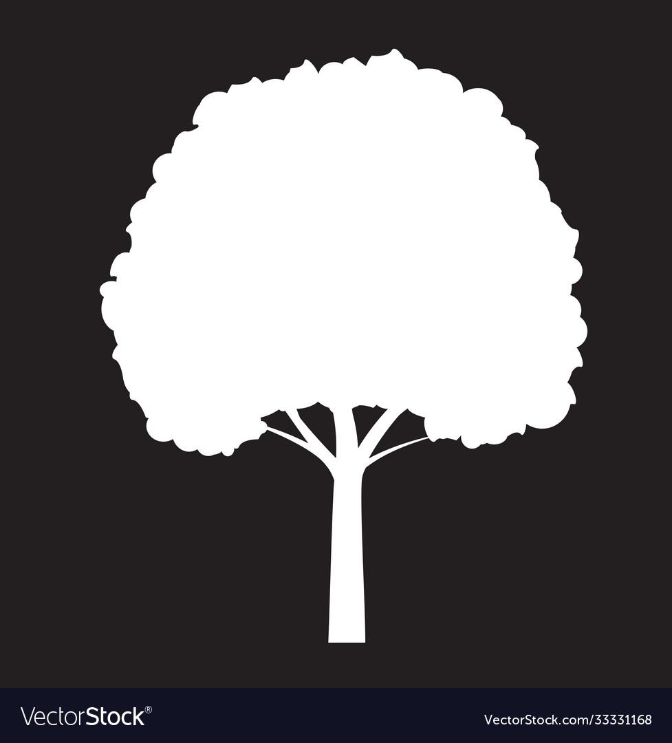 Shape white tree on black background outline