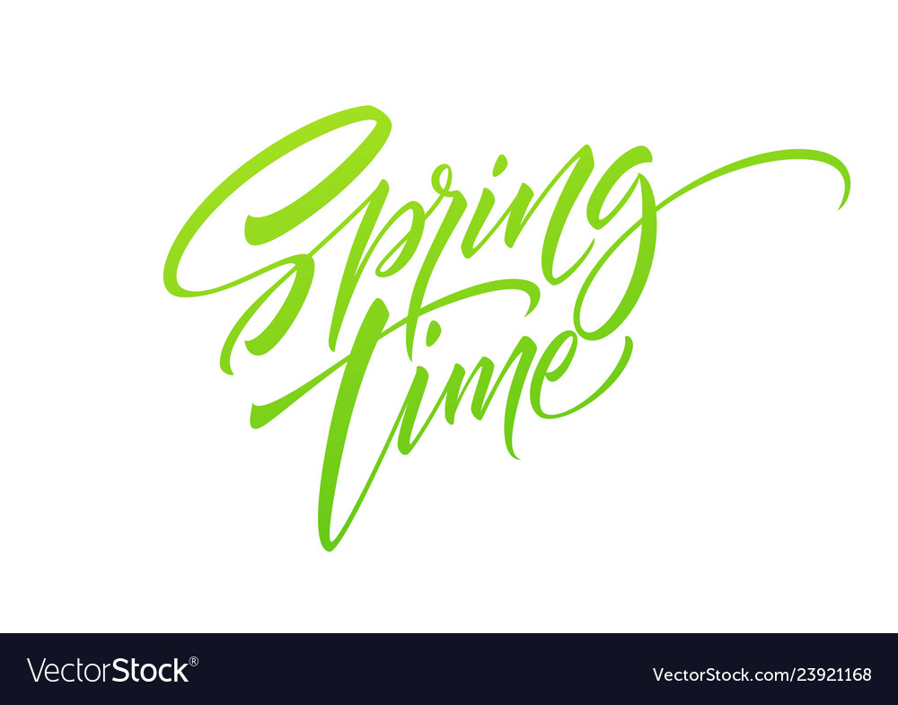 Spring time hand drawn lettering isolated on