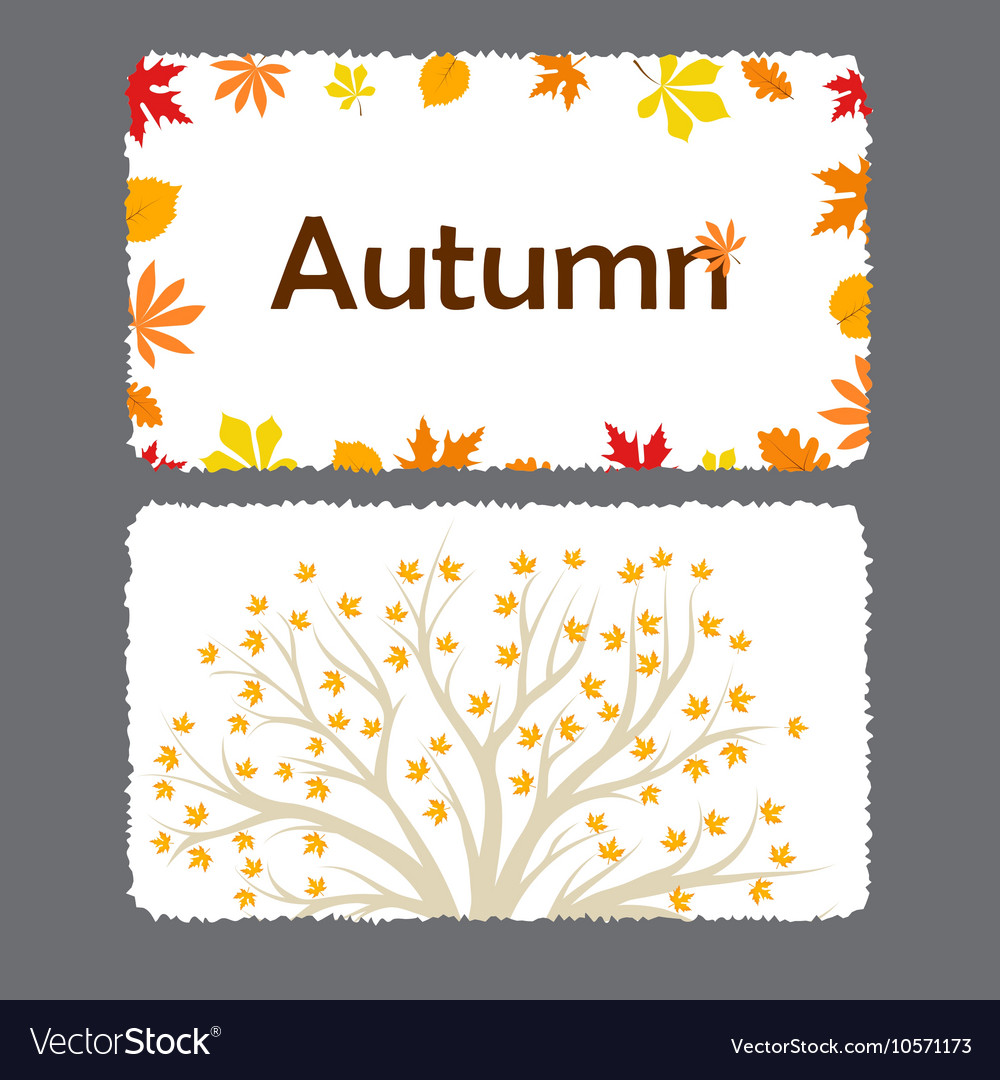 autumn flyer template with leaves royalty free vector image