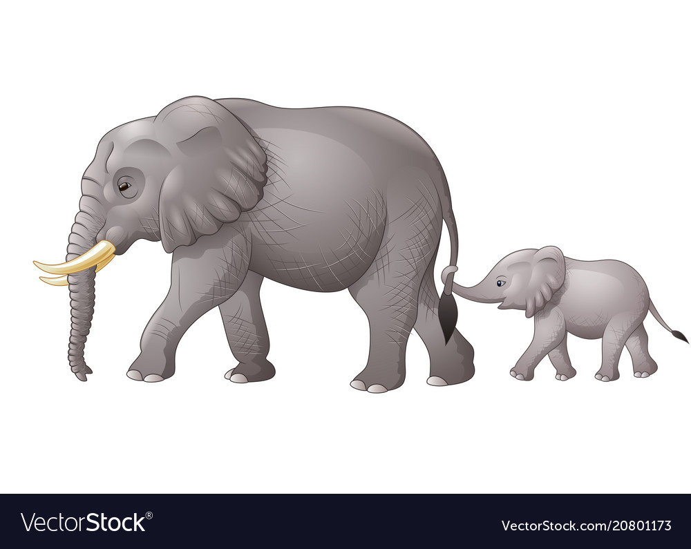 Cute mother and baby elephant Royalty Free Vector Image