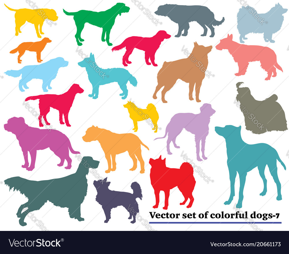 Set of colorful dogs silhouettes