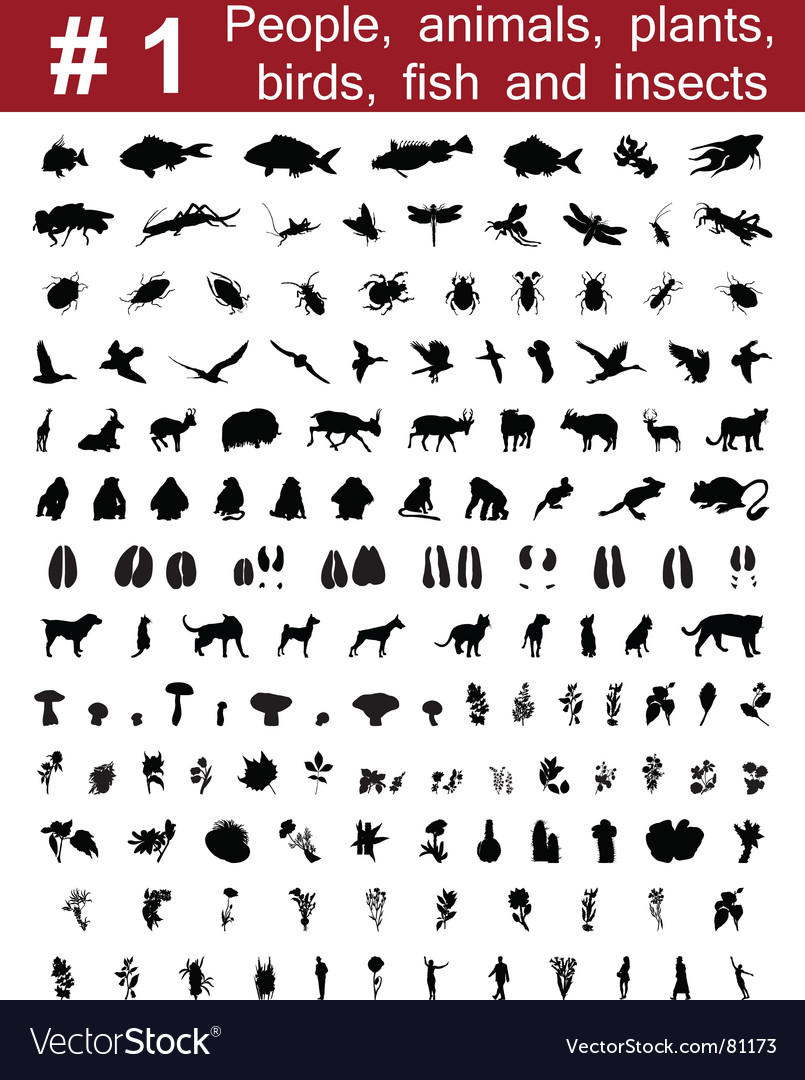 Silhouettes set vector image